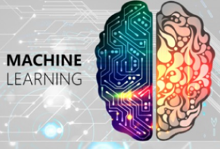 The Human Element in Machine Learning